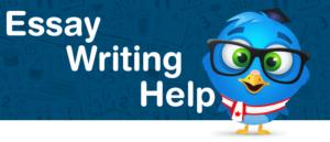 Online Homework Solutions